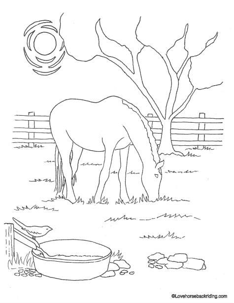 here are your printable horse coloring pages
