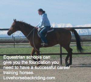 equestrian schools