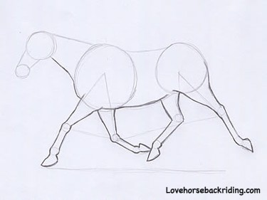 Horse Line Art - Easily Learn to Draw a Running Horse!