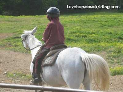 horse and rider love