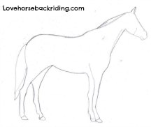 How to draw a horse step by step instructions step two form the outline of the body ccuart Images