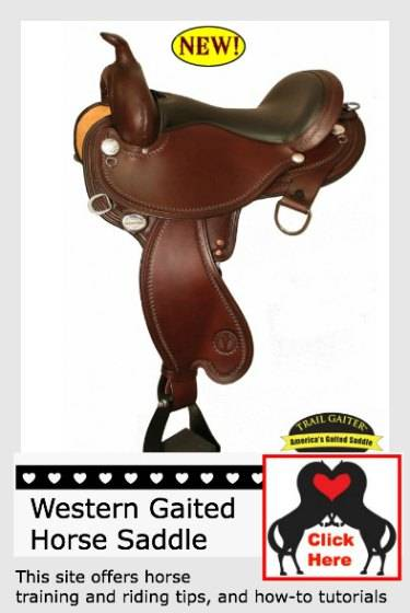Learn More About This Saddle