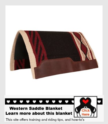 Learn More about this saddle blanket