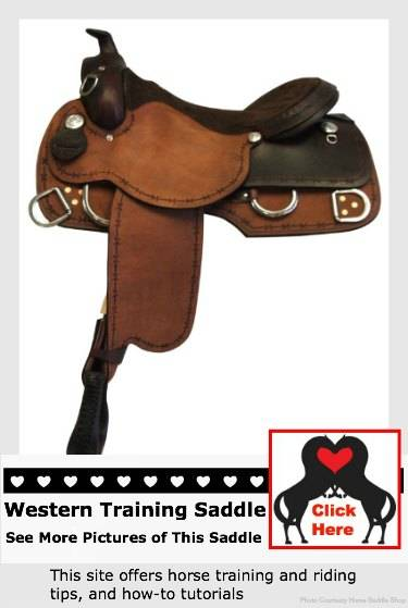 go see western training saddles
