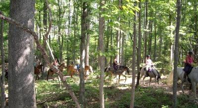 equestrian summer camps