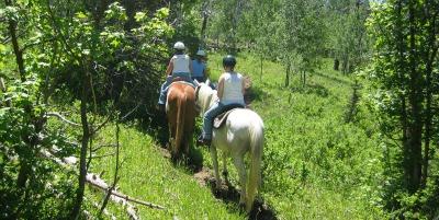 horse riding rental